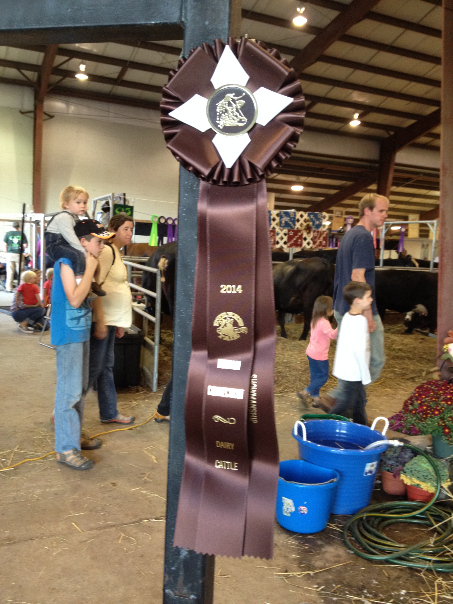 Royell got 8th place showmanship 2014 ADULT